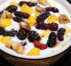yogurt and mulberry