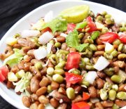 Sprouted Mung Bean Salad