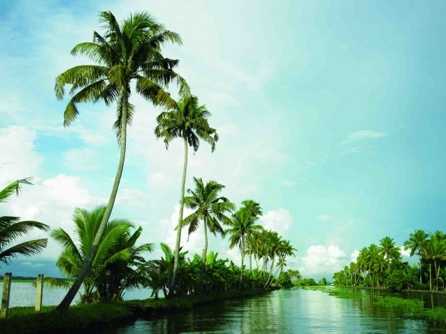 Kerala - A Laid-Back Vibe That You Should Never Miss